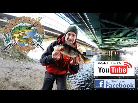 Streetfishing in Berlin