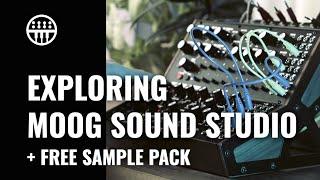 Exploring The Moog Sound Studio   + Free Sample Pack   Thomann