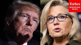 Liz Cheney Accuses Trump Of 'Supreme Dereliction Of Duty'