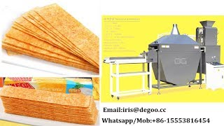 Jinan DG Potato flour length chips snack food production line