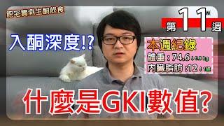 第 11 週 -入酮深度 ? 你知道什麼是GKI 嗎?  【實測生酮減肥】