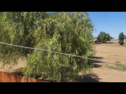 Ranch For Sale In Perris Ca.