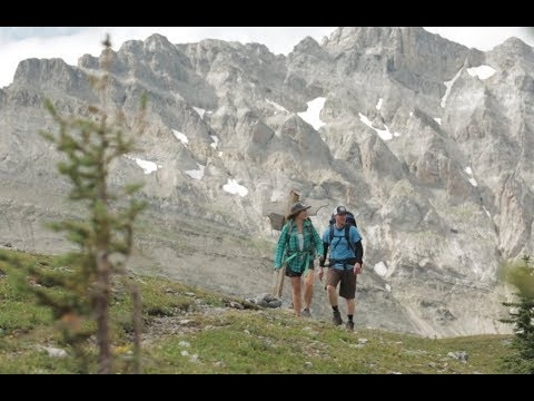 Fernie BC: The Best Adventure Vacation in the Rockies