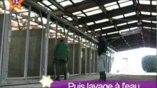 Kallagan réalise son rêve avec le concours de la SPA de Lyon thumbnail