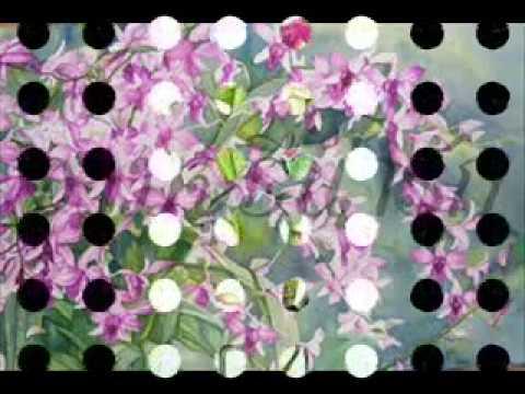 ภาพวาดดอกไม้งาม.wmv