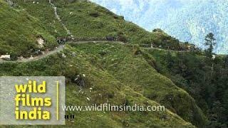 Nanda Devi Raj Jat :one of the world