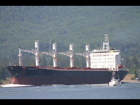 S NIKOLA BULK CARRIER SHIP FOR MERCHANT NAVY