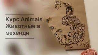 Курс Animals как рисовать животных в мехенди от shkolamehendi