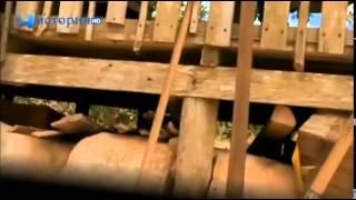 Самые опасные животные мира  Амазония   Документальный фильм 2014