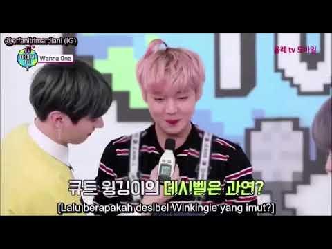 [Indo sub] Amigo TV- Park jihoon cut
