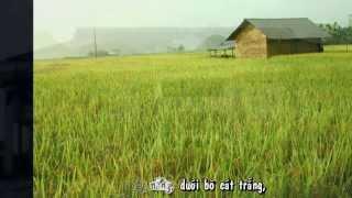 [Vietsub+kara] Thái Bình trong tôi  - NQP