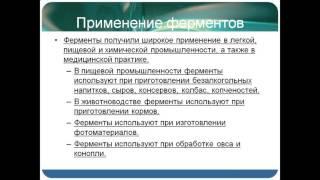 Презентация Ферменты и гормоны