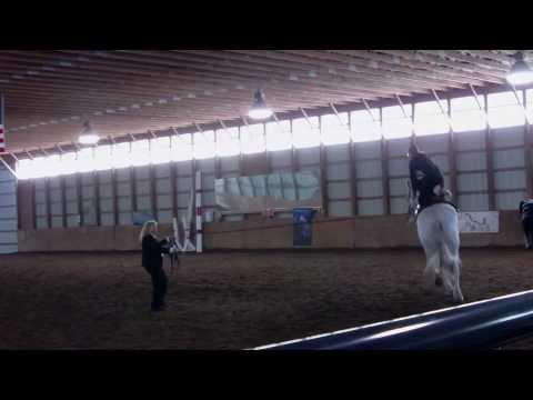 Melinda, Desiree and Steven at Dancing with Horses 2011