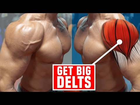 BOULDER SHOULDERS | The ONLY 3 Exercises You Need For BIG DELTS!
