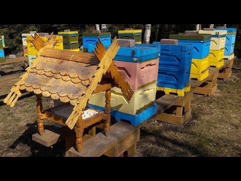 Корм для пчел Пыльца заменитель пыльцы