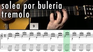 Flamenco Guitar 102 - 19 Solea por Buleria Tremolo