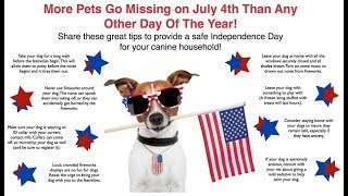Chief Luhnow Talks Pet Safety on July Fourth