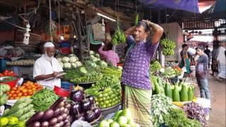 Amazing Fresh Morning Vegetables Market MohaKhali Dhaka Bangladesh