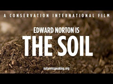 Nature Is Speaking: Edward Norton adalah Tanah | Conservation International (CI)
