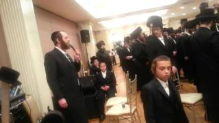 Shimmy Engel sings in a weeding in borough park
