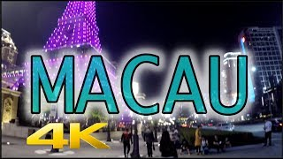 Macau at Night Cotai Strip 4K HD