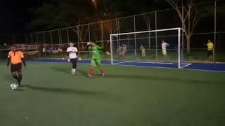 Puppy Stops Penalty Goal in Soccer Game - 1014817