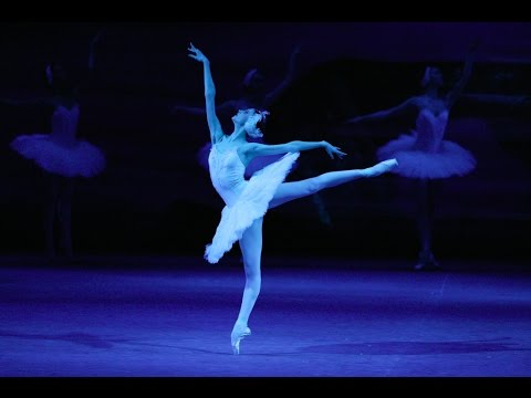 OFFICIAL TRAILER: SWAN LAKE