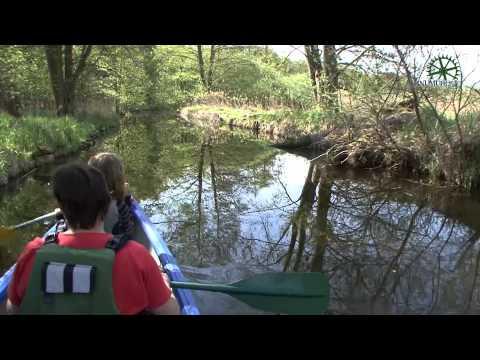 Kanutour durch die Schwaanhavel in Wesenberg / Mecklenburger Seenplatte