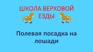 Полевая посадка на лошади