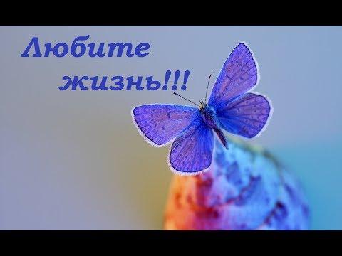 Любите жизнь! Позитив