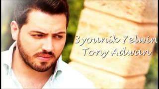 Tony Adwan - 3younik 7elween (Official Audio) |2013 | طوني عدوان - عيونك حلوين
