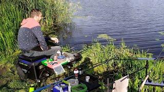 Рыбалка на Фидер. Стрим. Утро.