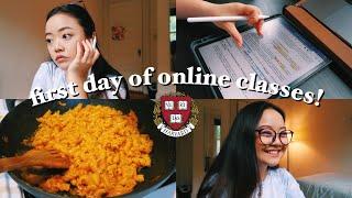 first day of online classes: harvard sophomore vlog! || pre-med neuroscience 🧠