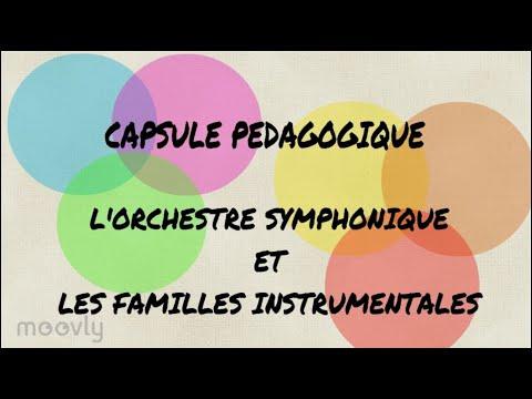 capsule pédagogique : les familles instrumentales et l'orchestre symphonique