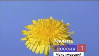 Рекламная заставка Россия 1 Максимовский 19.02.2020-31.03.2020 (Фейк)