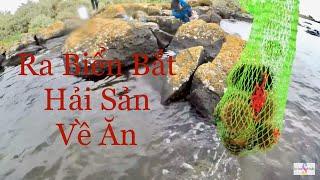 Bắt Bào Ngư, Nhum ăn sống và trộn gỏi ngon tuyệt vời