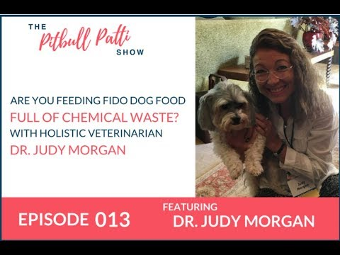 EP #013: ARE YOU FEEDING FIDO DOG FOOD FULL OF CHEMICAL WASTE? HOLISTIC VETERINARIAN DR. JUDY MORGAN