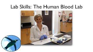 Lab Skills:  Human Blood Lab