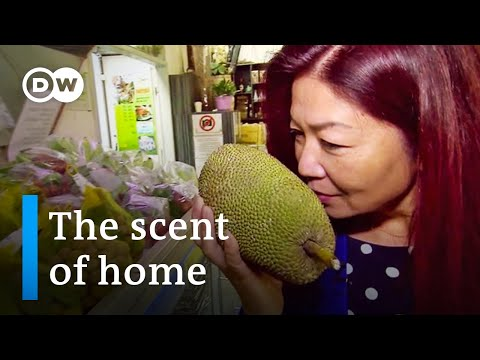 Little Hanoi In Berlin - A Scent Of Home For Vietnamese Expats | DW Documentary