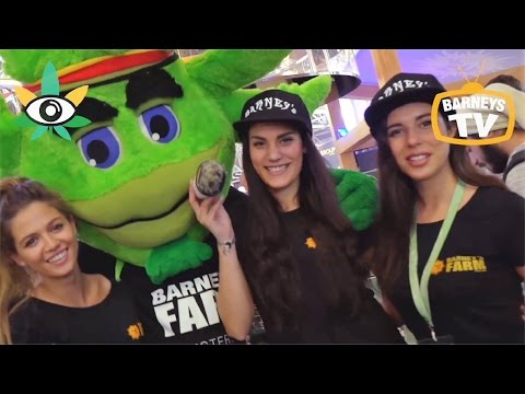 Barneys Farm @ Spannabis 2017 - Barcelona - Barneys TV