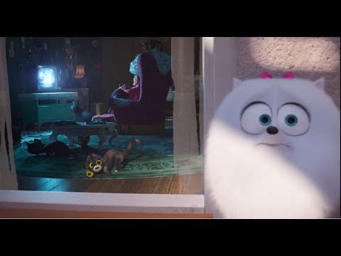 Oh Dear Sweet Busy Bee The Secret Life Of Pets 2 Clip 2 Movies
