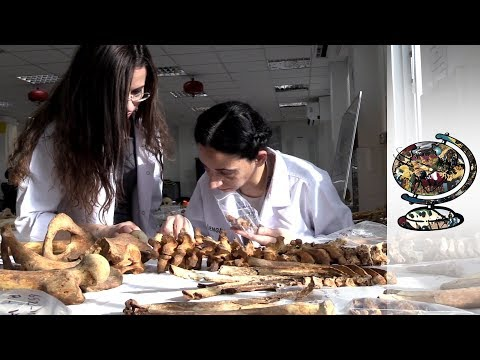 Cyprus Is Looking For Closure In Archaeology