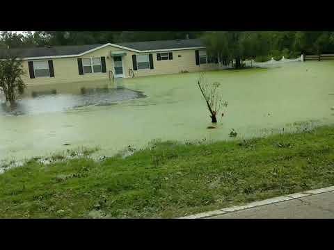 Hurricane Irma flooding Valrico FL