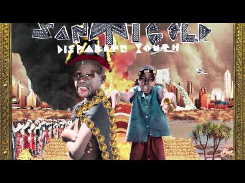 Santigold - Disparate Youth - Lyrics