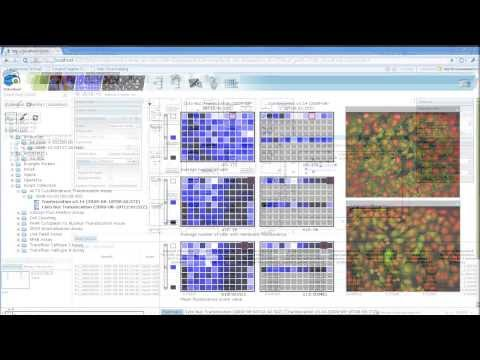 Exporting Data from the Columbus Image Data Storage and Analysis System