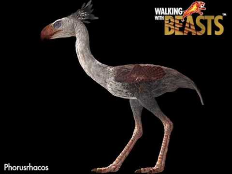 When Dinosaurs Ruled The Mind 17 Walking With Beasts