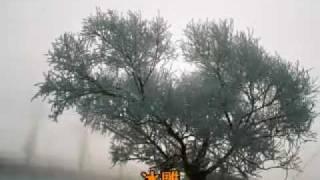與桂林山水、雲南石林、長江三峽並列被譽為中國四大自然奇觀的吉林【霧...