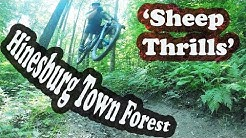 Sheep Thrills | Mountain Biking Hinesburg Town Forest | Hinesburg, VT