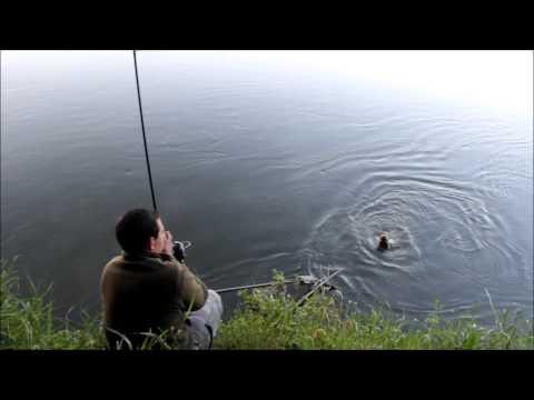 La pêche dété dans le domaine de Saratov