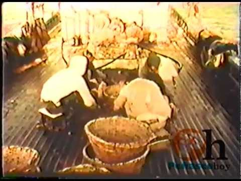 Camaron (Old Documentary)